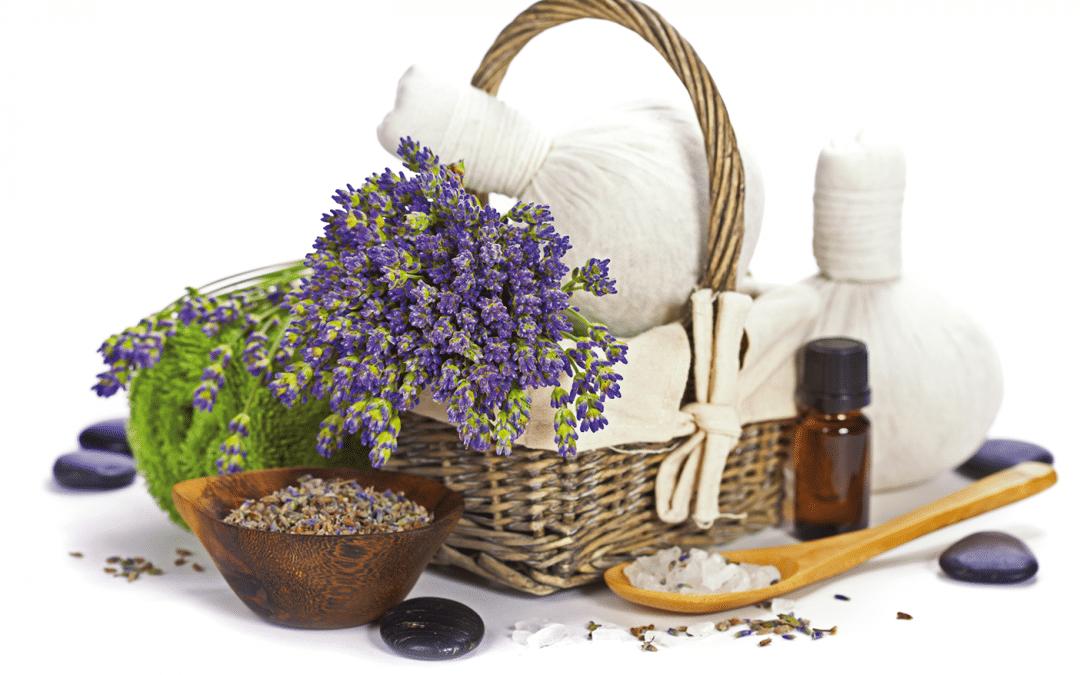 Winterhit – Geniessen Sie Wellness und Wohlbefinden!