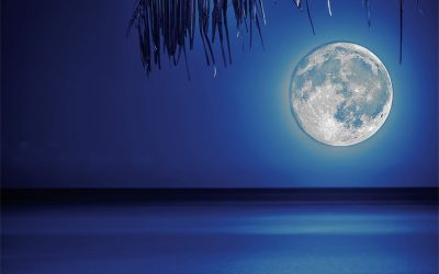 Mondscheinschwimmen in der Badi Weierwise